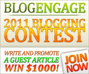 Blog Engage RSS and Contest Sponsorship Services